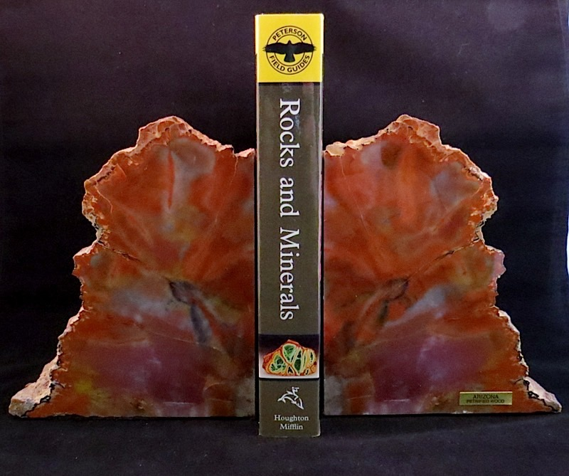 webBookends Arizona Petrified Wood  225 Million Yrs. Old (3)