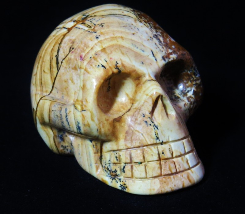 Picture Jasper Skull (2)